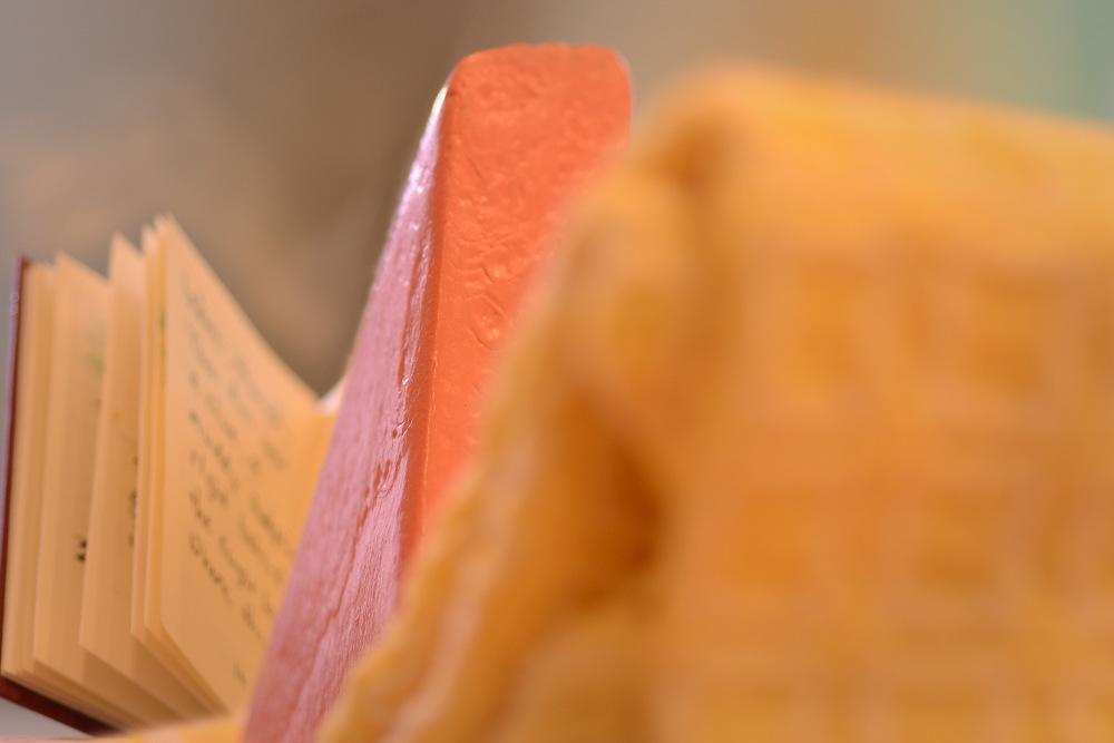 Flow Financial Planning's Block Woman Reads a Book